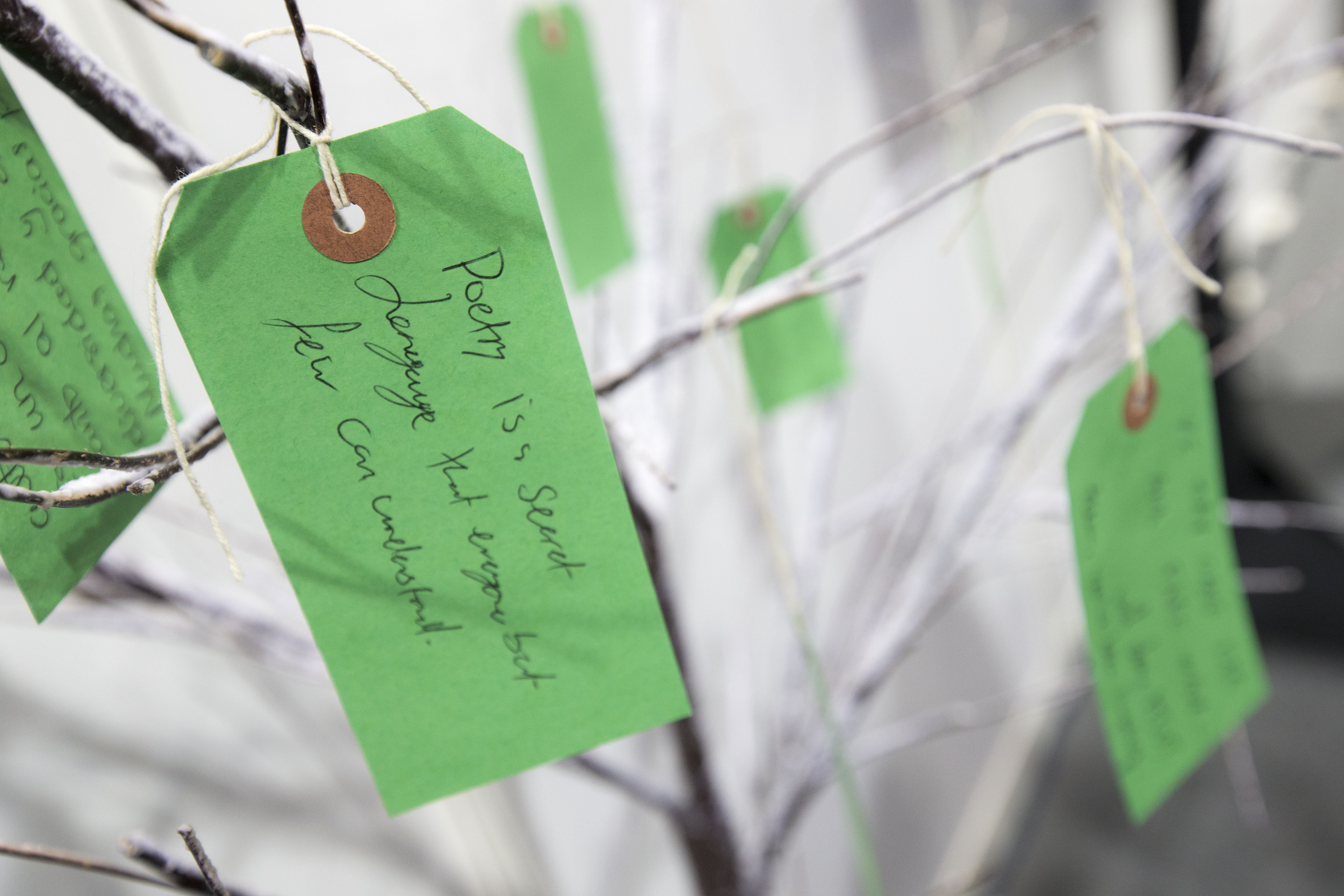 comments on poet-tree